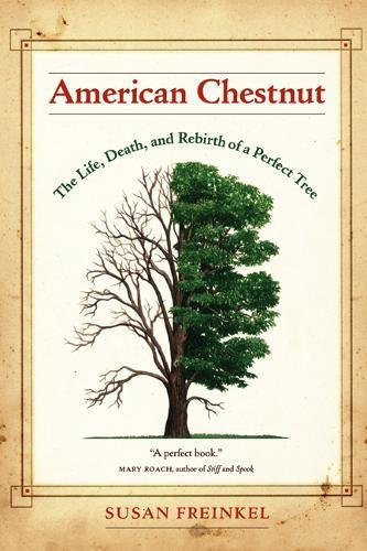 9780520247307: American Chestnut: The Life, Death, and Rebirth of a Perfect Tree