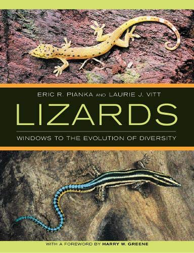 9780520248472: Lizards: Windows to the Evolution of Diversity (Organisms and Environments)