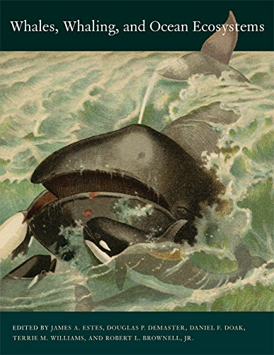 9780520248847: Whales, Whaling, And Ocean Ecosystems