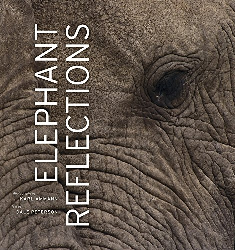 Elephant Reflections: Dale Peterson