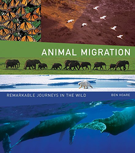 9780520258235: Animal Migration: Remarkable Journeys in the Wild