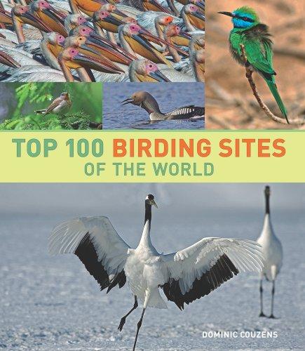9780520259324: Top 100 Birding Sites of the World