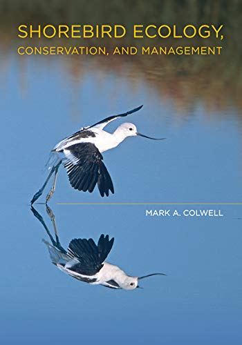Shorebird Ecology, Conservation, and Management (Hardback): Mark A. Colwell