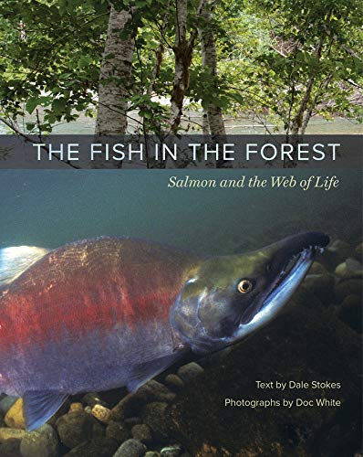 9780520269200: The Fish in the Forest: Salmon and the Web of Life