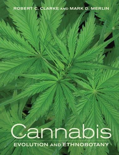 9780520270480: Cannabis: Evolution and Ethnobotany