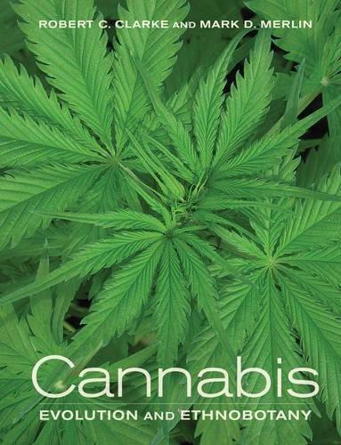Cannabis: Clarke, Robert Connell;