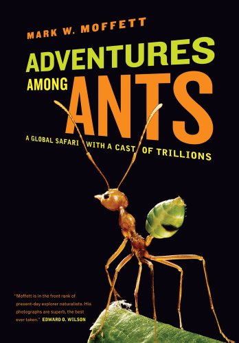 9780520271289: Adventures among Ants: A Global Safari with a Cast of Trillions