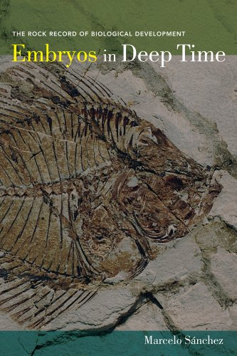 9780520271937: Embryos in Deep Time: The Rock Record of Biological Development
