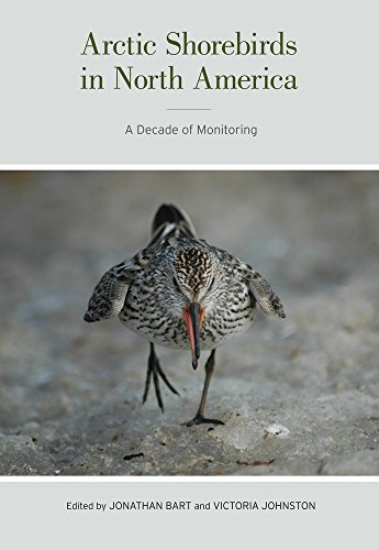 Arctic Shorebirds in North America: A Decade of Monitoring (Studies in Avian Biology)