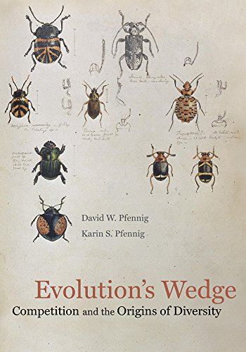 9780520274181: Evolution's Wedge: Competition and the Origins of Diversity (Organisms and Environments)