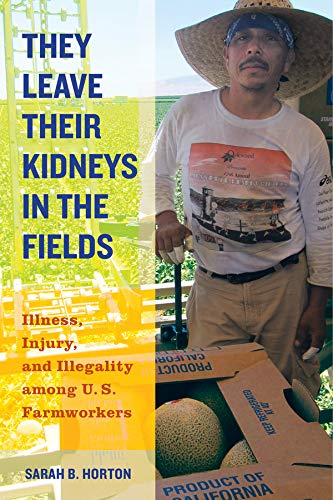 9780520283275: They Leave Their Kidneys in the Fields: Illness, Injury, and Illegality among U.S. Farmworkers (California Series in Public Anthropology)