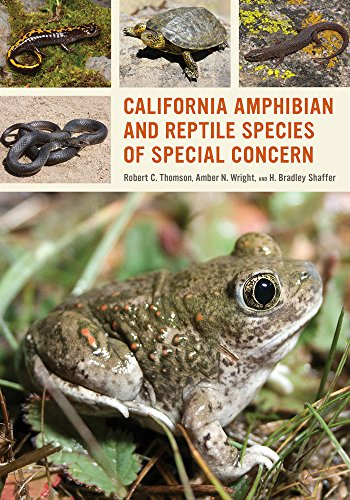 California Amphibian and Reptile Species of Special Concern: Thomson, Robert C., Wright, Amber N., ...