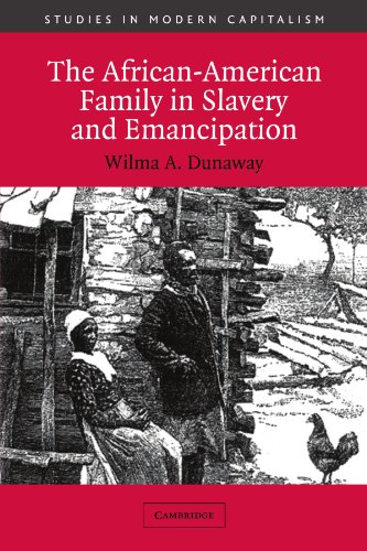 9780521012164: The African-American Family in Slavery and Emancipation (Studies in Modern Capitalism)