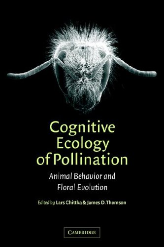 9780521018401: Cognitive Ecology of Pollination: Animal Behaviour and Floral Evolution