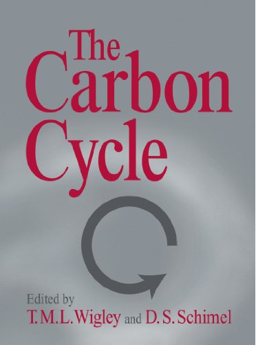 9780521018623: The Carbon Cycle