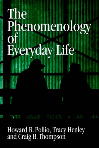 9780521031400: The Phenomenology of Everyday Life: Empirical Investigations of Human Experience