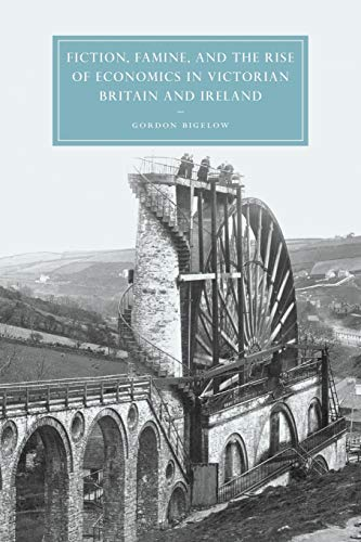 9780521035538: Fiction, Famine, and the Rise of Economics in Victorian Britain and Ireland