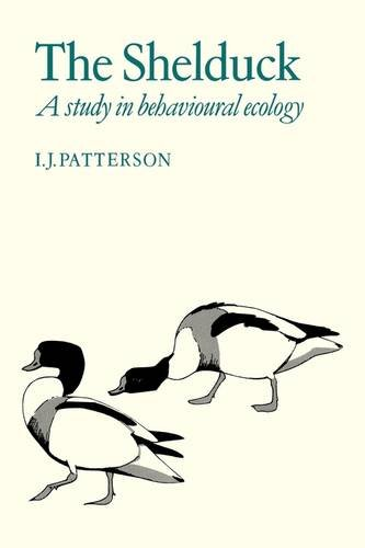9780521113359: The Shelduck: A Study in Behavioural Ecology
