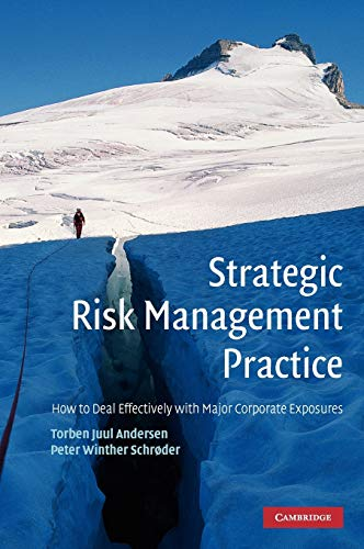 9780521114240: Strategic Risk Management Practice: How to Deal Effectively with Major Corporate Exposures