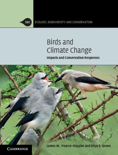 9780521114288: Birds and Climate Change: Impacts and Conservation Responses (Ecology, Biodiversity and Conservation)