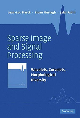9780521119139: Sparse Image and Signal Processing: Wavelets, Curvelets, Morphological Diversity