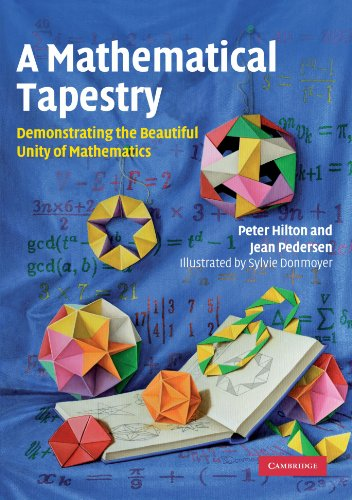 9780521128216: A Mathematical Tapestry: Demonstrating the Beautiful Unity of Mathematics