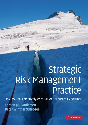 9780521132152: Strategic Risk Management Practice: How to Deal Effectively with Major Corporate Exposures