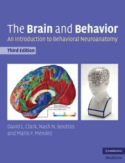 9780521142298: The Brain and Behavior: An Introduction to Behavioral Neuroanatomy (Cambridge Medicine (Paperback))