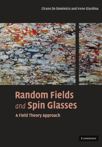 9780521143554: Random Fields and Spin Glasses: A Field Theory Approach