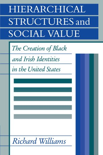 9780521144797: Hierarchical Structures and Social Value: The Creation of Black and Irish Identities in the United States