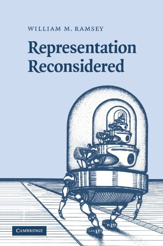 9780521153324: Representation Reconsidered