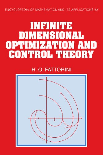 9780521154543: Infinite Dimensional Optimization and Control Theory (Encyclopedia of Mathematics and its Applications)