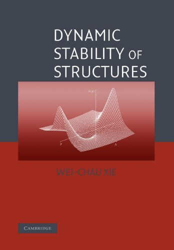 9780521158824: Dynamic Stability of Structures