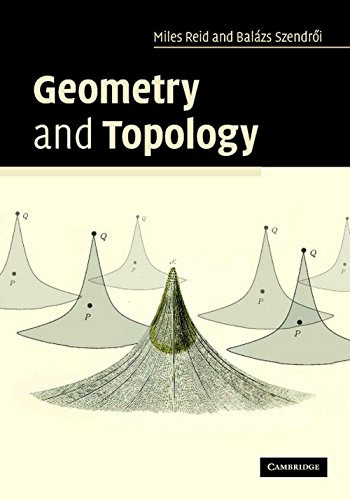 9780521170178: Geometry and Topology ICM Edition
