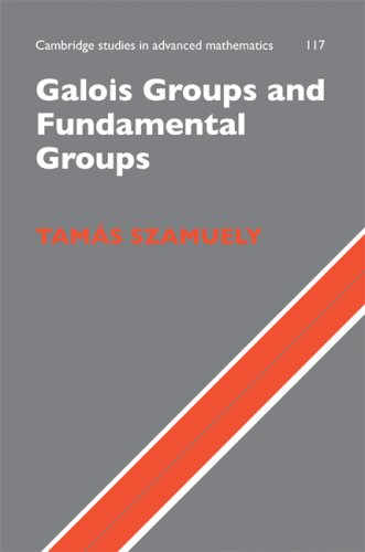 9780521170253: Galois Groups and Fundamental Groups ICM Edition