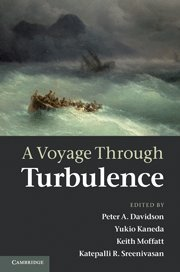 9780521198684: A Voyage Through Turbulence