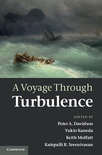9780521198684: A Voyage Through Turbulence