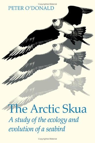The Arctic Skua : A Study of the Ecology and Evolution of a Seabird