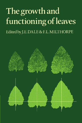 9780521279284: The Growth and Functioning of Leaves: Proceedings of a Symposium Held Prior to the Thirteenth International Botanical Congress at the University of Sydney, 18-20 August, 1981