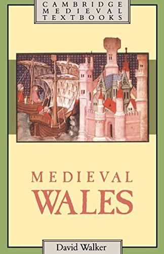 9780521311533: Medieval Wales (Cambridge Medieval Textbooks)