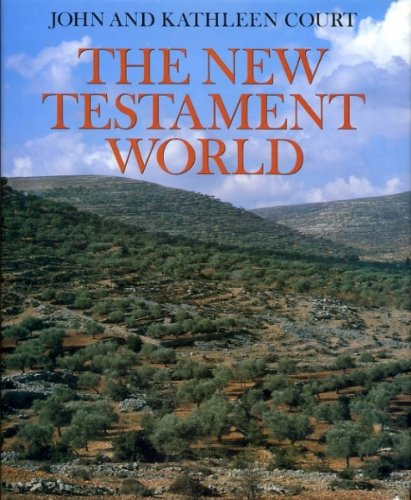 9780521340076: The New Testament World