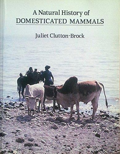9780521346979: A Natural History of Domesticated Mammals
