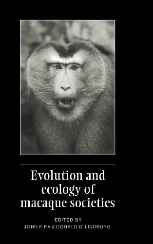 9780521416801: Evolution and Ecology of Macaque Societies