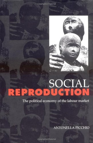 9780521418720: Social Reproduction: The Political Economy of the Labour Market