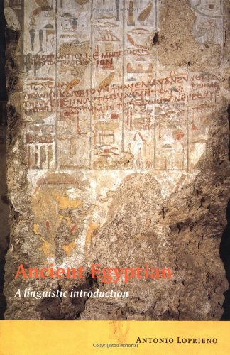 9780521443845: Ancient Egyptian: A Linguistic Introduction