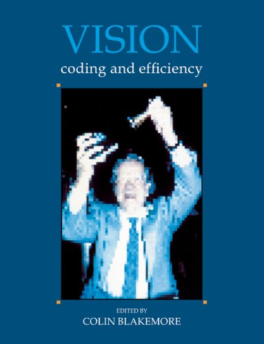 9780521447690: Vision: Coding and Efficiency
