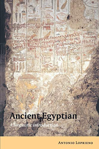 9780521448499: Ancient Egyptian: A Linguistic Introduction