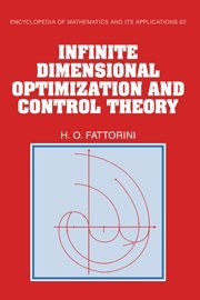 9780521451253: Infinite Dimensional Optimization and Control Theory (Encyclopedia of Mathematics and its Applications)