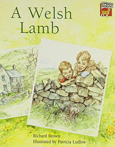 9780521468602: A Welsh Lamb (Cambridge Reading)