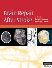 9780521515337: Brain Repair After Stroke